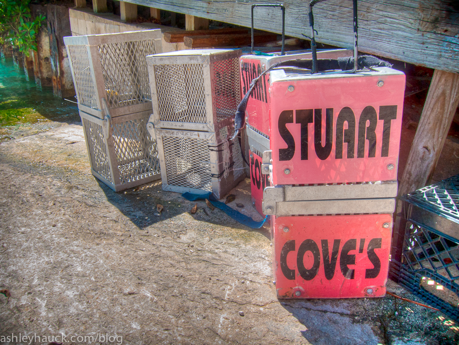 Bait Boxes at Stuart Cove's