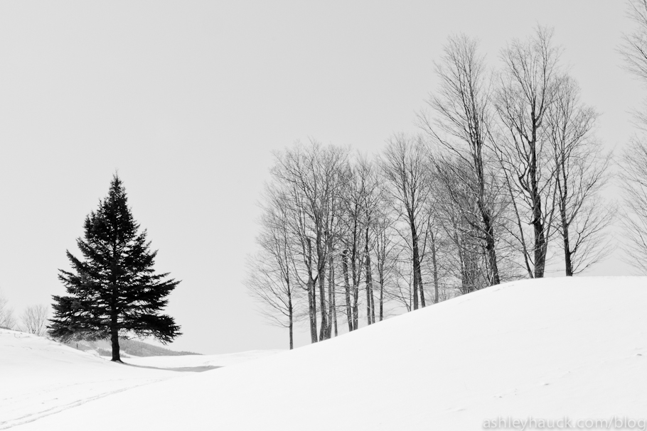 Killington, VT: Winter in Black and White