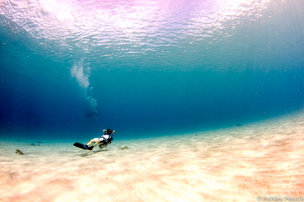 Diver in the shallows in Curacao