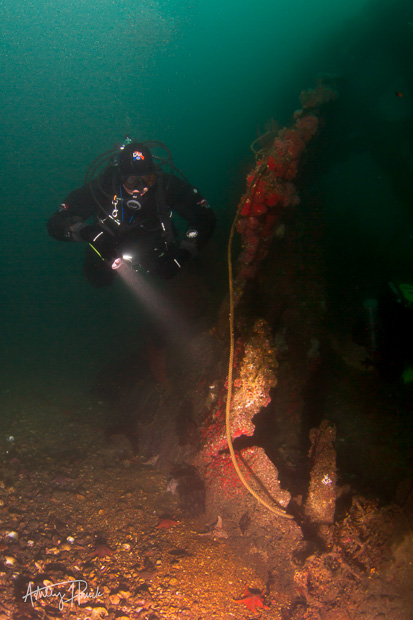 Danny diving the Olympic II wreck