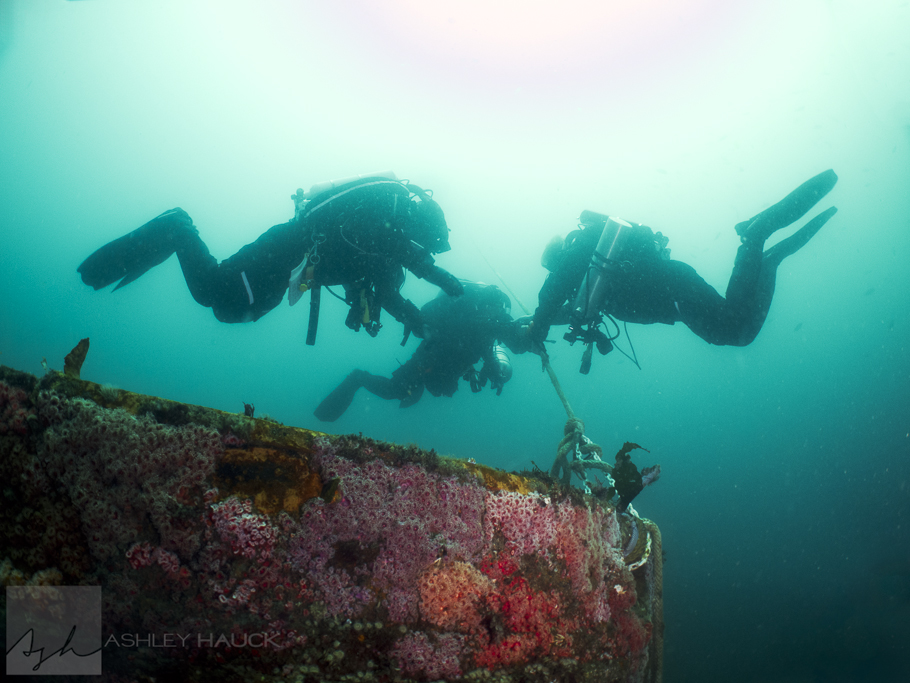 Divers on the stern line.