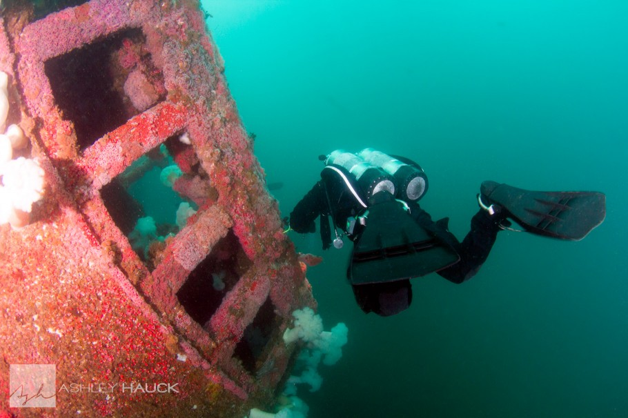 Diver on HMCS Yukon wreck, with backscatter removed using the Dust & Scratches Filter