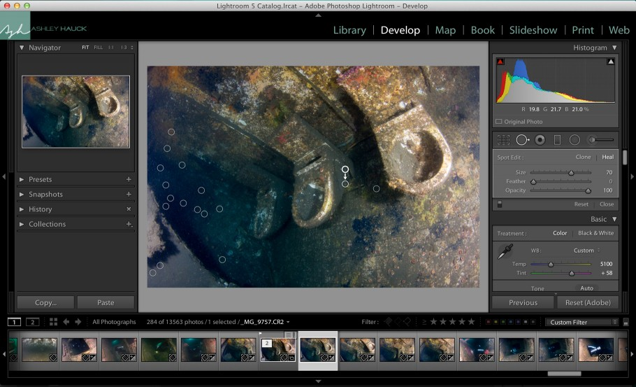 Using the Spot Removal Tool to remove backscatter in Lightroom