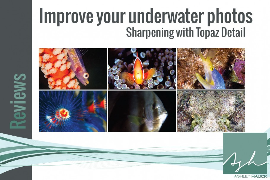 Topaz-Detail-Underwater-Photography-Review